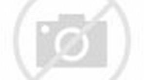 MASKOT AREMA INDONESIA wallpapers
