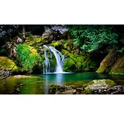 Beautiful Nature Cool Pictures HD Wallpaper Of