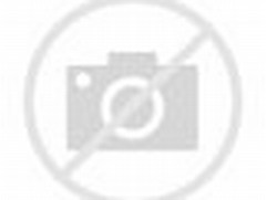 Gambar dan Foto Anjing Lucu Menggemaskan