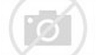 Pemandangan alam jepang berupa jalan setapak diantara hutan bambu.