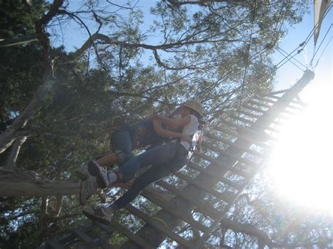Uf Mba Ropes Course by Odyssey Ropes Course At Ucla The Mba Student Voice