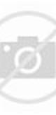 Fantasia Daisy Model Webe