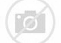 ... gelombang tsunami, kecuali pohon kelapa. (Foto: Indra Shalihin