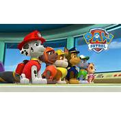 NickALive Spin Master To Showcase New Paw Patrol Toy Line At The