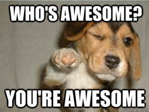 Who s awesome you re awesome puppy love quickmeme