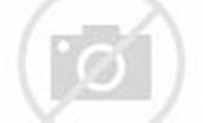 gambar kartun barbie dan kuda terbang