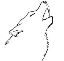 How To Draw A Wolf That Is Easy Amazing Wolf Drawing Clipart Best