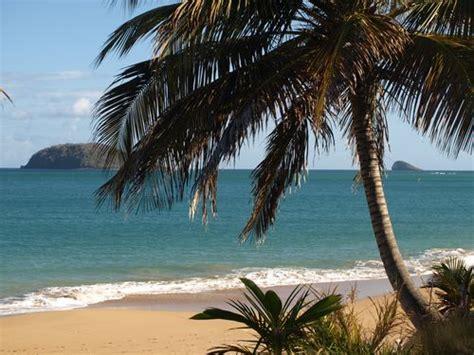 Hamac Guadeloupe by Le Hamac Plage Location Appartement A Deshaies En Guadeloupe
