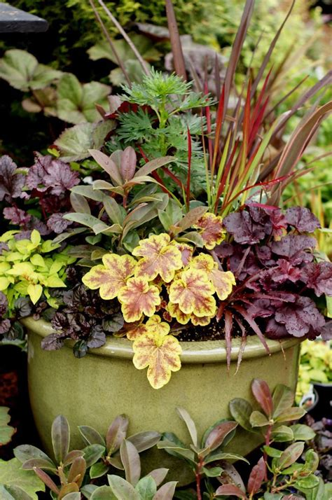 Perennial Planters by 94 Best Images About Container Gardens On