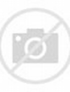 Monkeys Dressed in Clothes
