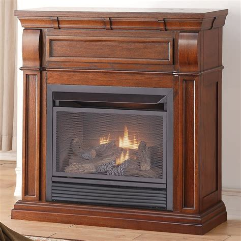 Dual Fuel Fireplace by Duluth Forge Dual Fuel Vent Free Fireplace 26 000 Btu