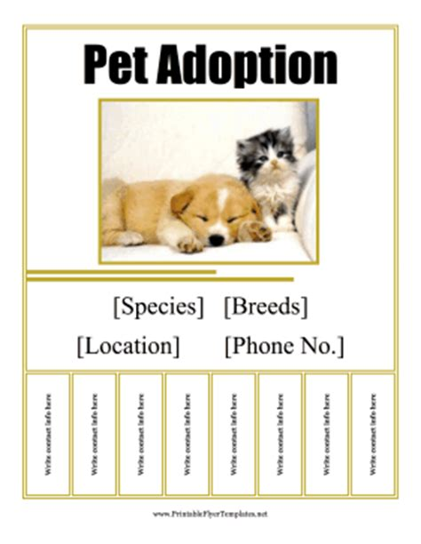 adoption flyer template pet adoption flyer