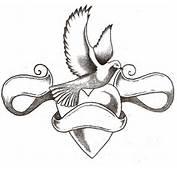 Dove Tattoo Designs Gallery 8