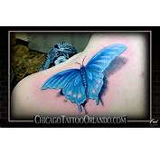 Realistic Butterfly Tattoo Imagejpg
