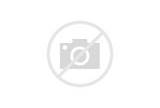 Pictures of Medieval Stained Glass Windows