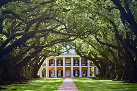plantation home mille fiori favoriti oak alley and evergreen plantations