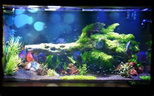duplicate the lighting spectrum beneficial for growing aquarium plants