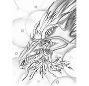 Dragon Drawings And Other Artwork From Agustin Pia Stockton CA  Many