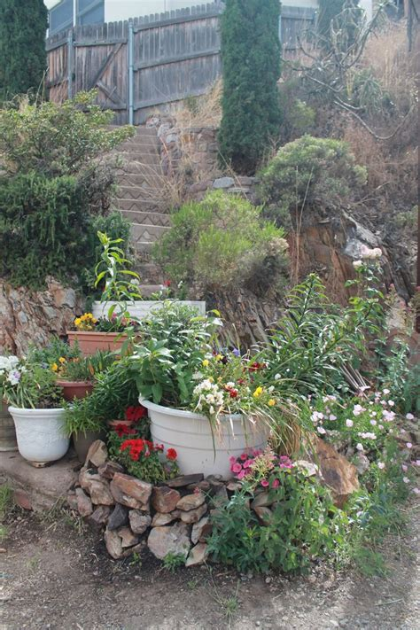 container gardening arizona a container garden going up a set of stairs on temby