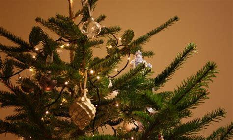 Murah Pohon Natal Tinggi 90 Cm Pvc Tebal Kode P 003 harga pohon natal 2015 dari murah ke mahal jurnal lamudi