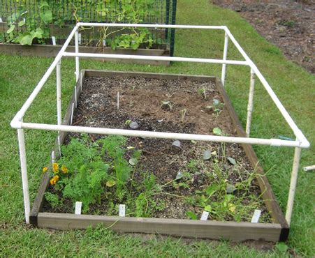 garden bed cover how to build a multipurpose raised bed protective cover