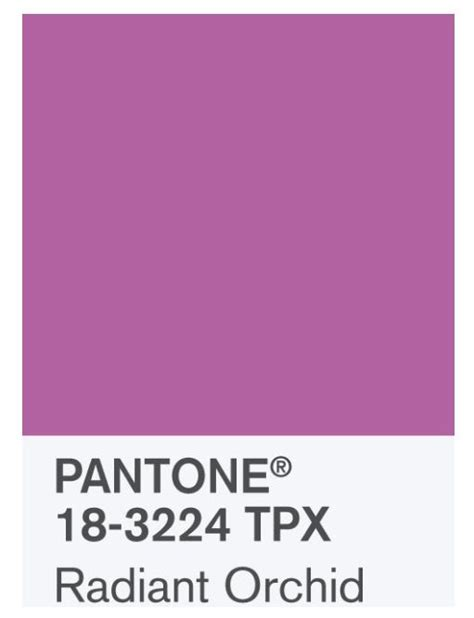 17 best images about refrigerator on pinterest pantone 17 best images about pantone color of 2014 orchid on