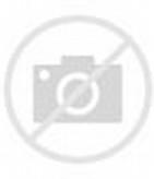 Ukuran Lapangan Bola Basket   Duasatu.Web.id   4.5   247 Views