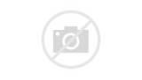 Florida Gators Logo Coloring Pages
