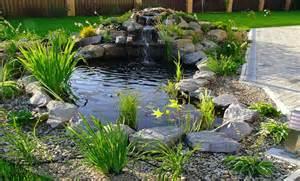 Fish pond design ideas backyard pond designs small