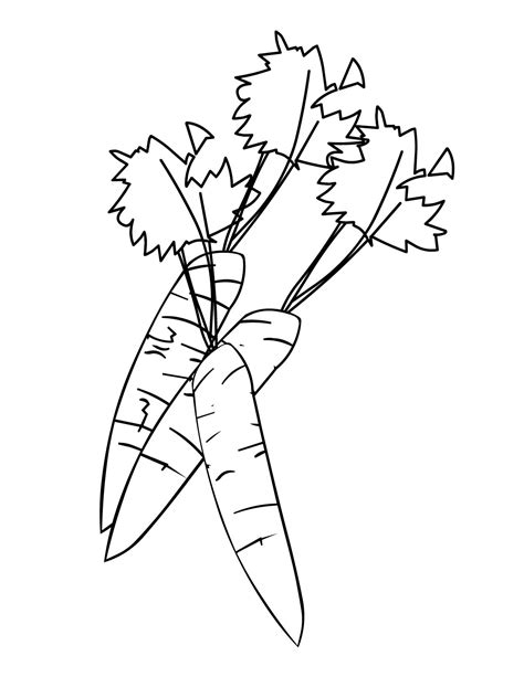 Carrot Coloring Pages 1 Carrot Coloring Page