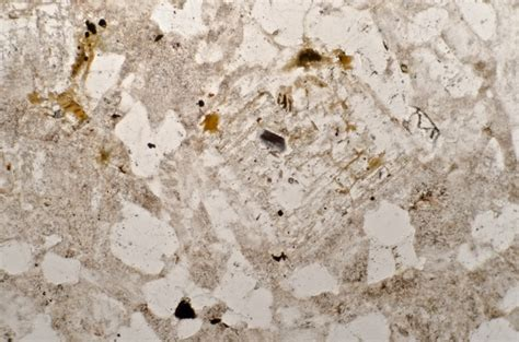 Quartz Thin Section by Hedgehope Hill Geology