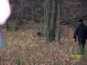 mistaken for paranormal midnight watchmen™