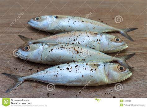 tonno cucinare tonno fresco pronto per cucinare fotografia stock