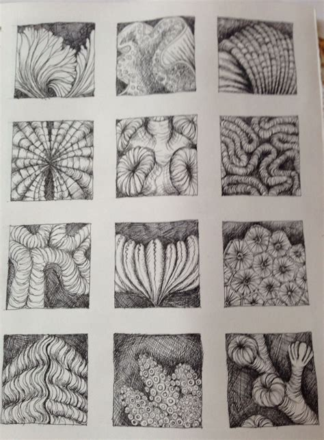 pattern art gcse pen drawing of natural forms inspired by ernst haeckel by