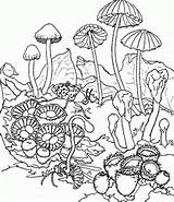 Trippy Coloring Pages For Kids. Print and Color the Pictures