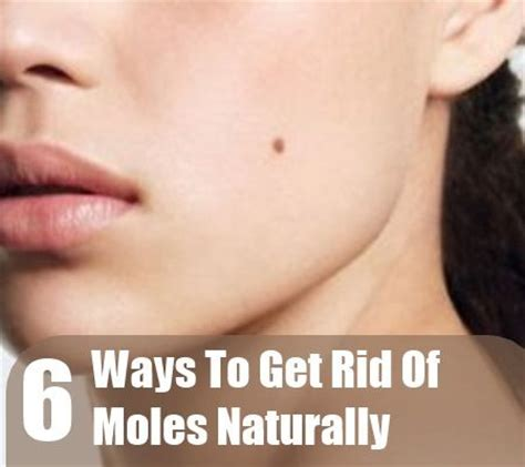 how to get rid of moles in my backyard pinterest the world s catalog of ideas