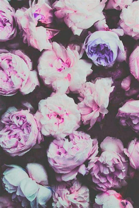 flower wallpaper macbook desktop backgrounds tumblr vintage google search