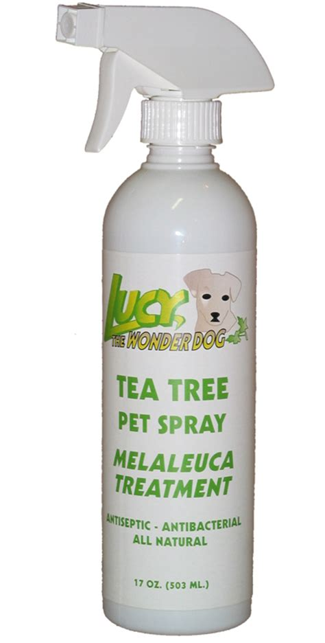 tea tree for fleas on dogs tea tree pet spray melaleuca antiseptic treatment for dogs
