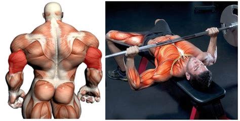 ways to increase your bench press 4 ways to boost your bench press max fitness workouts