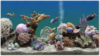 Free Marine Aquarium Screensaver