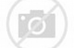 Gambar Pemandangan Alam di Desa yang Indah - Kumpulan Gambar & Animasi