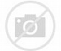 Things to Do in Davao City Philippines
