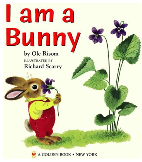 am i a books i am a bunny traditional books by
