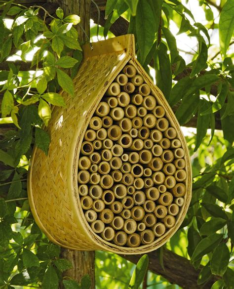 buy bee house mason bee house mason bees gardener s supply