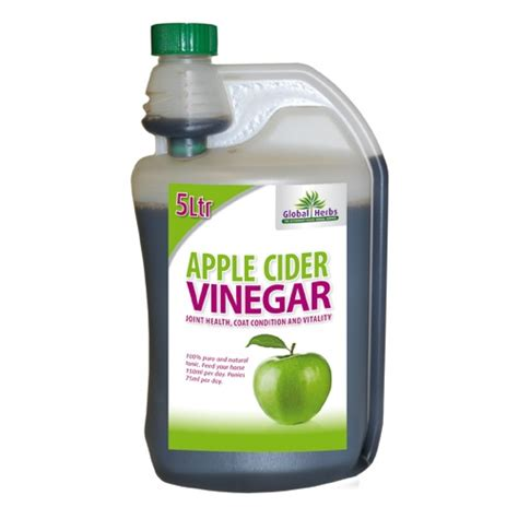 is vinegar bad for dogs 17 best images about apple cider vinegar animal health on for dogs sore