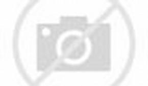 Alienware Desktop Themes Windows 7 Download
