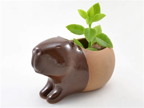 animal pots handmade ceramic animal planters 1 jpg