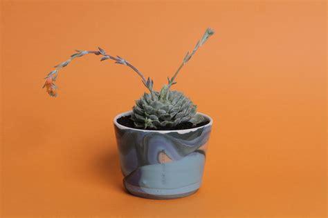 vasi terracotta colorati vasi terracotta colorati cheap vaso a calice in