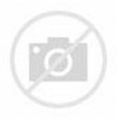 Maluku Islands Map