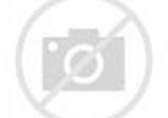 Large Detailed World Map